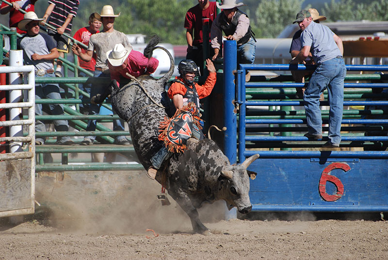 Labor Day Rodeo 20010 (Eric Smith Perfect Shot Photography)