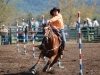 Field Day Rodeo 2012 (Eric Smith Perfect Shot Photography)